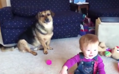 This Is What Happens When a Baby Discovers Puppy Play Time