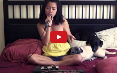 Awesome One Woman Michael Jackson Cover Impresses Everyone But This Pug